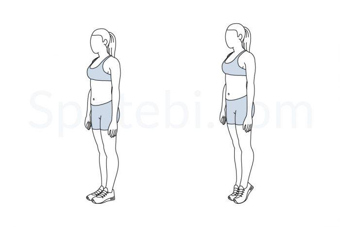 calf-raises-exercise-illustration