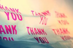 thank-you-1540713