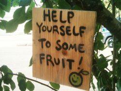 help-yourself allan tranter