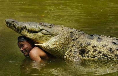 Puerto rico's most famous crocodile