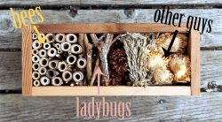 25 things to do in spring: build a bug hotel