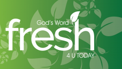 Sign up to Fresh lifewords Daily today!