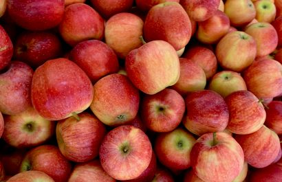 WA is officially, scientifically, indisputably the best place ... for apples